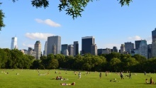 Central Park: Zelená oáza všedém srdci New Yorku