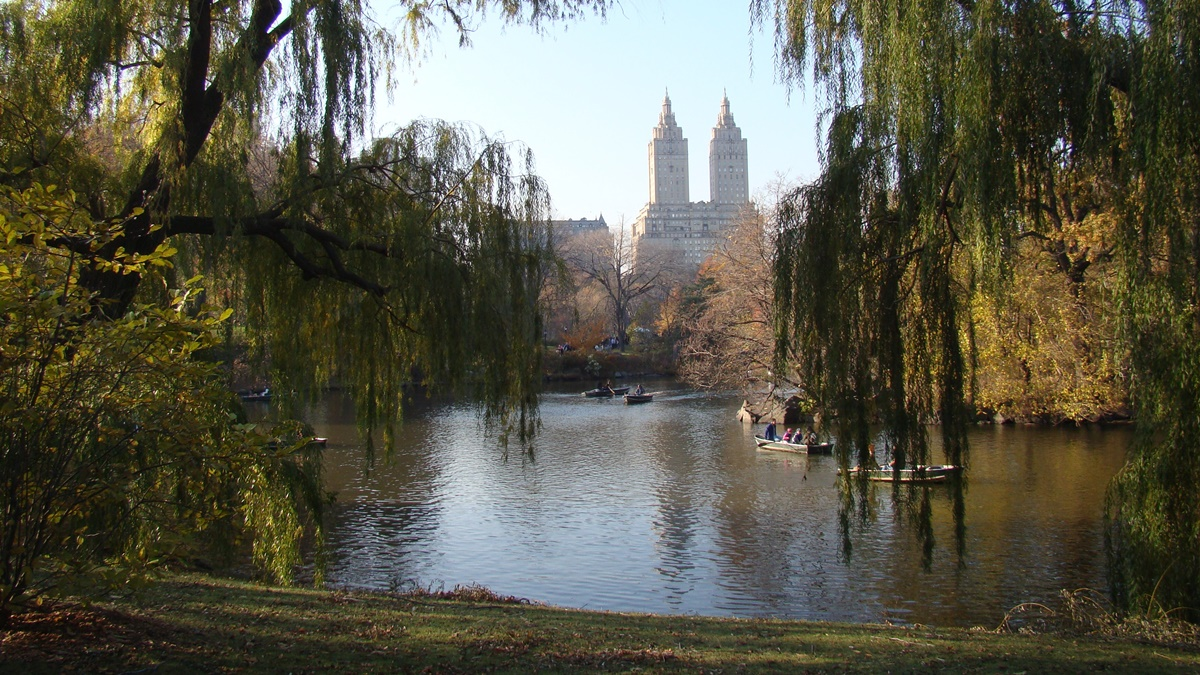 Central Park, New York | © vagueonthehow