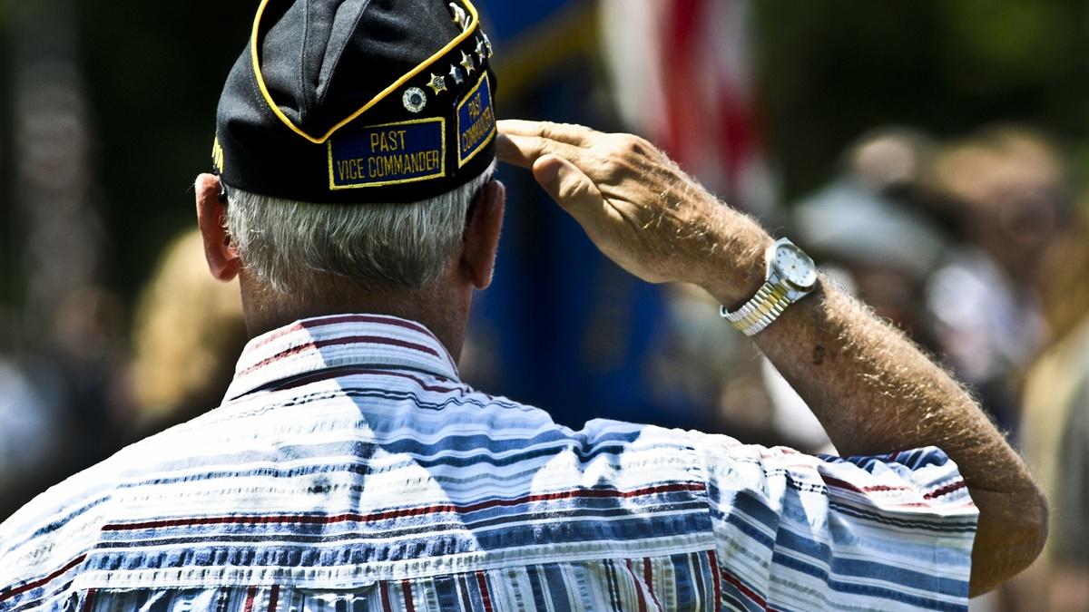 Den válečných veteránů / Veterans Day | © DVIDSHUB