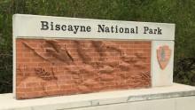 Národní park Biscayne: Informace, fotky, rady atipy pro návštěvníky