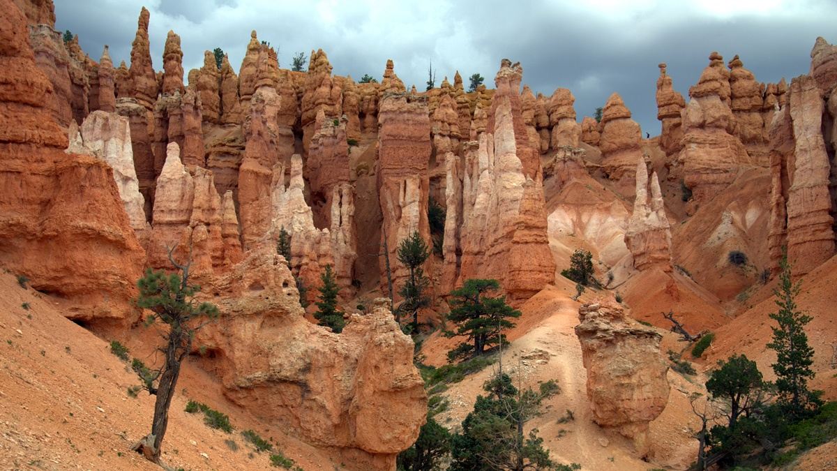 Bryce Canyon National Park | © Maureen