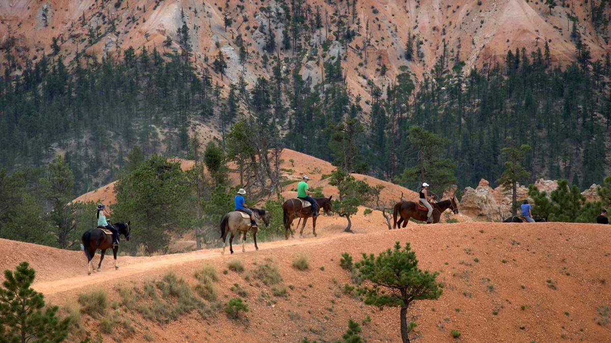 Národní park Bryce Canyon | © Maureen