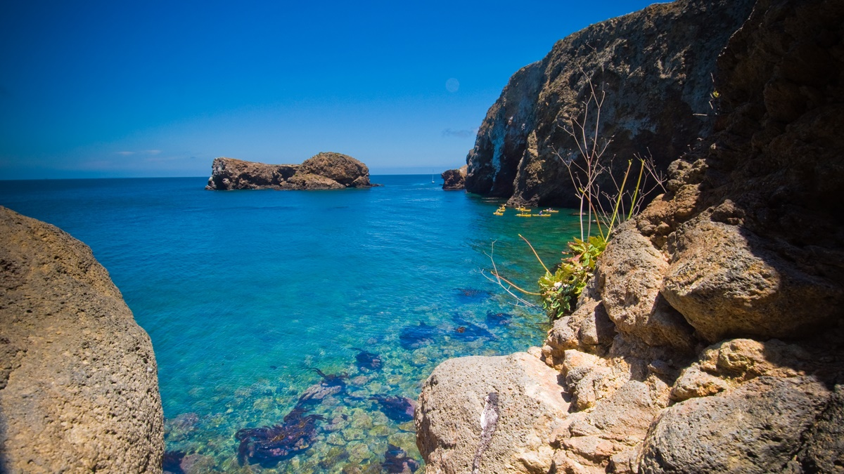 Ostrov Santa Cruz v NP Channel Islands   © David Wan