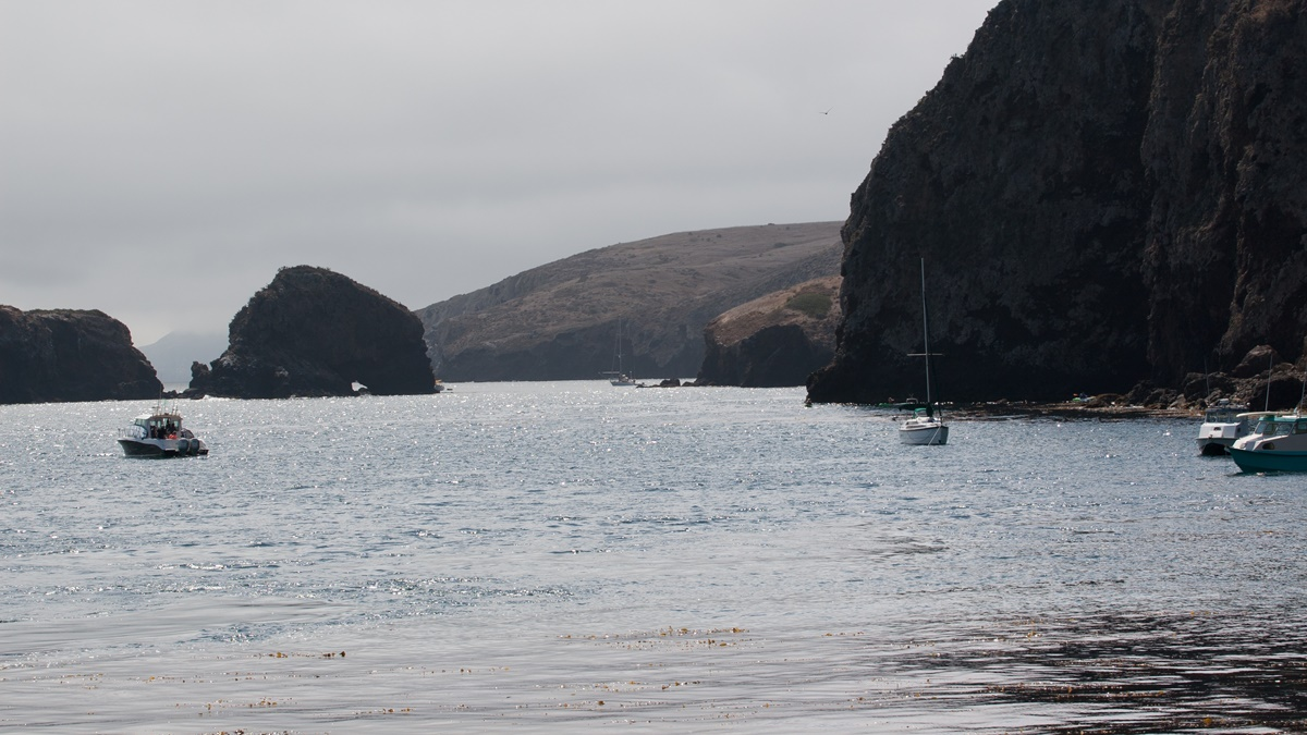 NP Channel Islands   © Andy Rusch