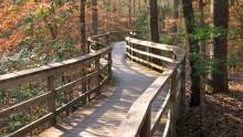 Národní park Congaree: Informace, fotky, rady atipy pro návštěvníky