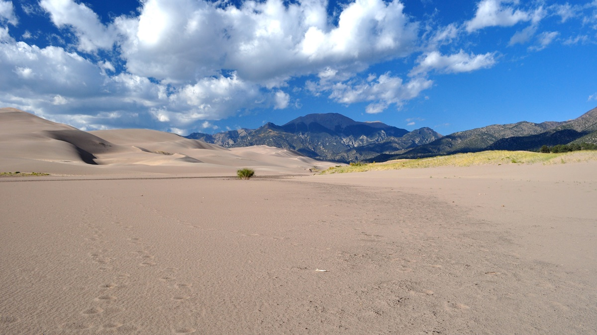 NP Great Sand Dunes | © Madeleine Deaton