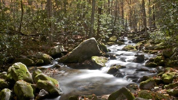 Národní park Great Smoky Mountains | © anneh632
