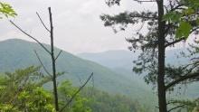 Národní park Great Smoky Mountains: Informace, fotky, rady atipy pro návštěvníky