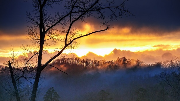 Great Smoky Mountains National Park | © Martinliao
