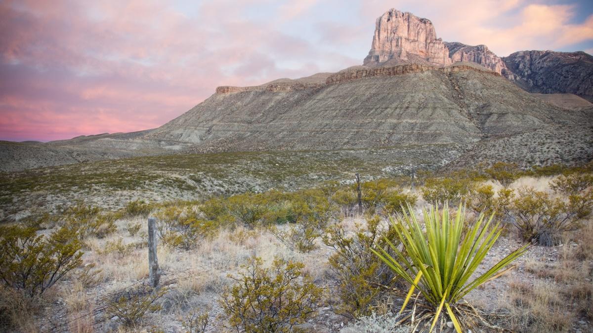Národní park Guadalupe Mountains   © Justin Meissen