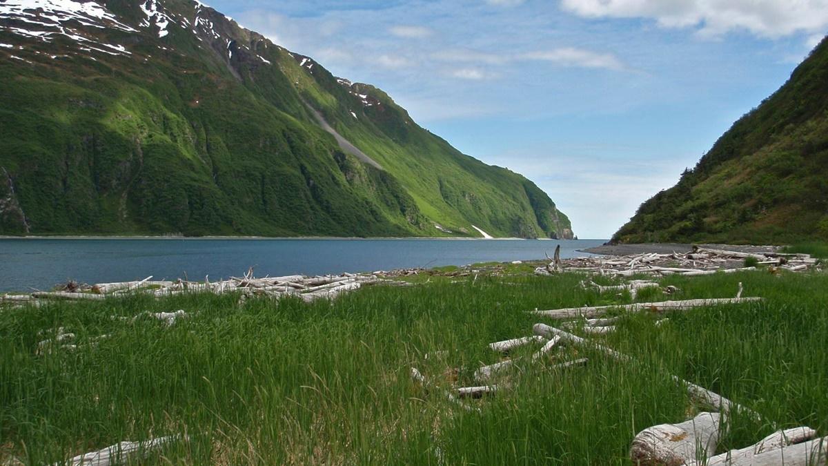 Národní park Kenai Fjords | © National Park Service, Alaska Region