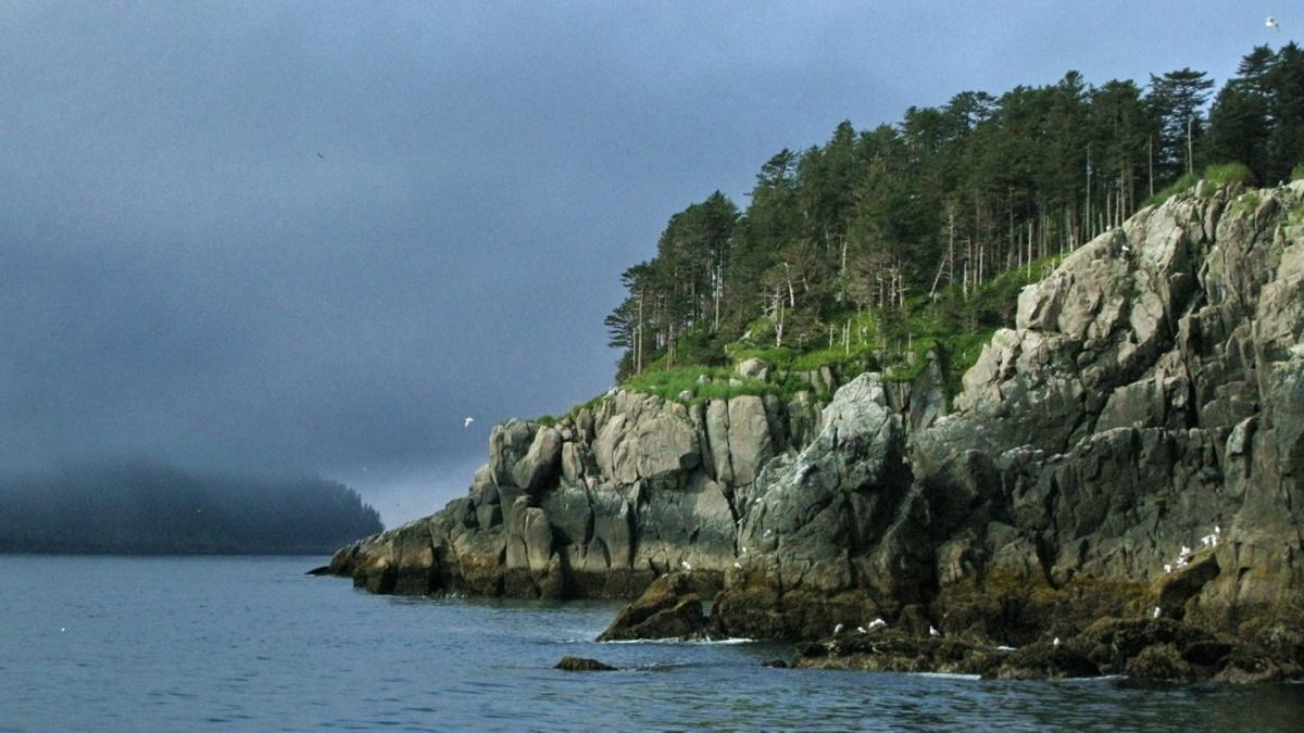 Národní park Kenai Fjords | © Dave Bezaire & Susi Havens-Bezaire