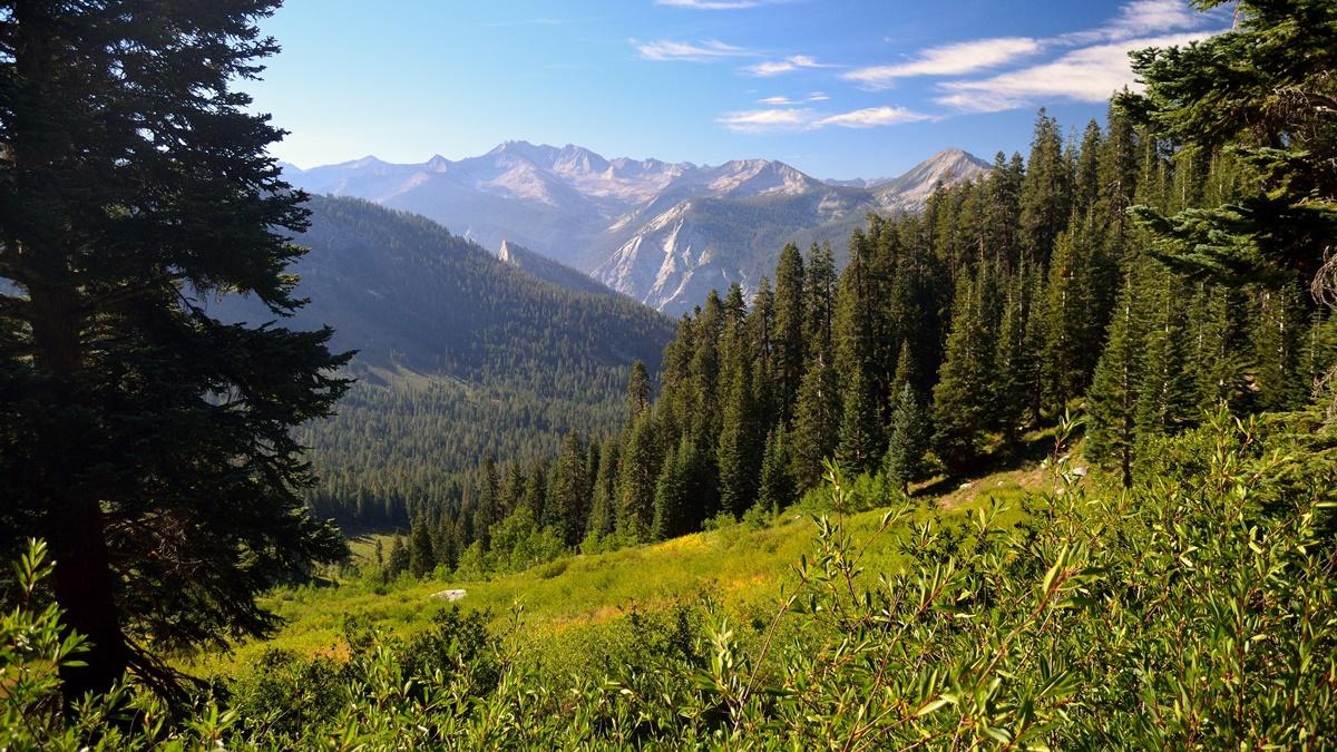 Crescent Creek Trail, Národní park Kings Canyon | © Tom Hilton