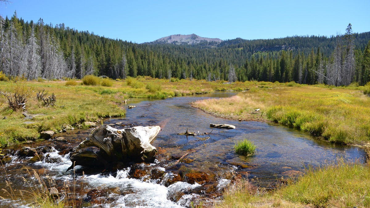 Hat Creek Meadow, Národní park Lassen Volcanic | © LassenNPS