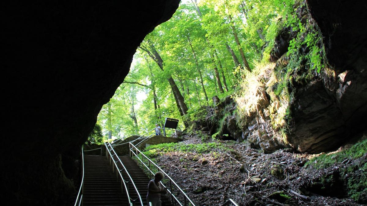 Národní park Mamutí jeskyně | © daveynin