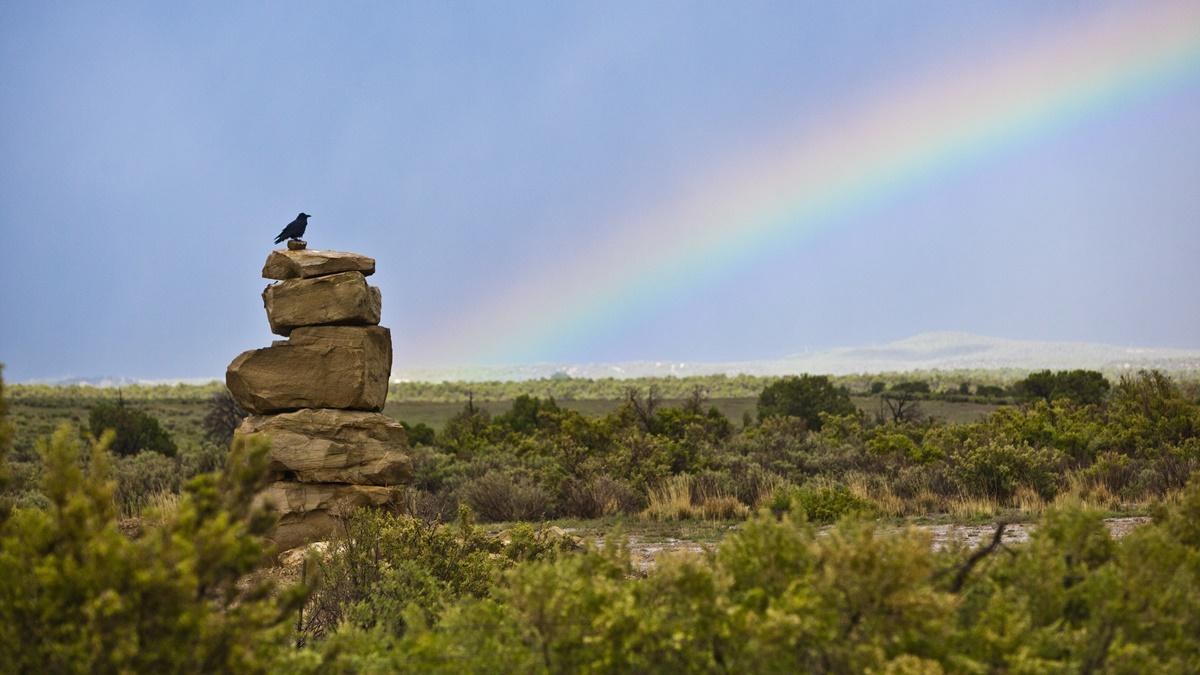 NP Mesa Verde | © Anthony Quintano