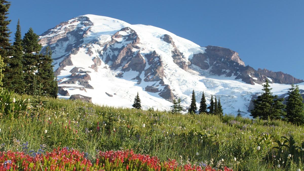 Národní park Mount Rainier | © Jeff
