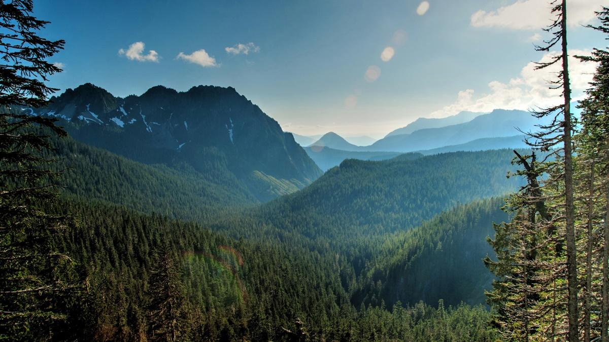 Národní park Mount Rainier | © ArtBrom
