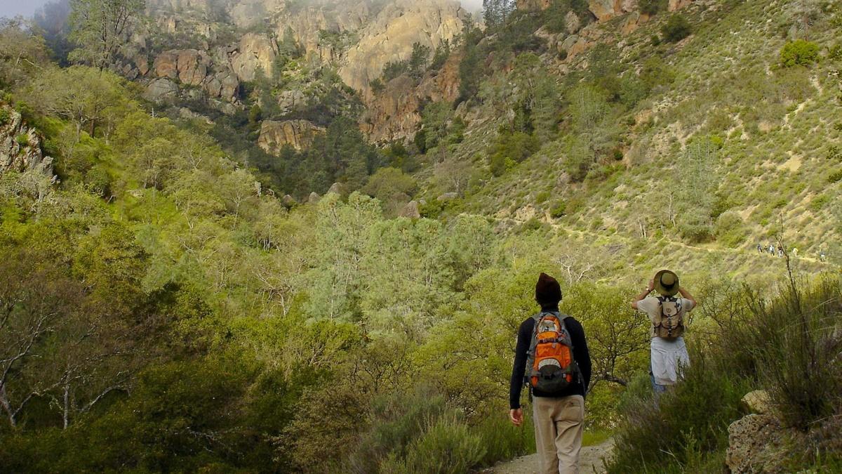 Condor Gulch Trail, Národní park Pinnacles | © Miguel Vieira