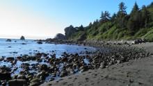 Národní park Redwood: Informace, fotky, rady atipy pro návštěvníky