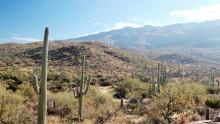 Národní park Saguaro: Informace, fotky, rady atipy pro návštěvníky
