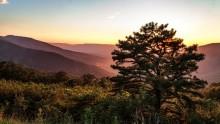 Národní park Shenandoah: Informace, fotky, rady atipy pro návštěvníky