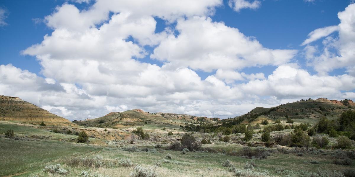 Jones Creek, Národní park Theodora Roosevelta | © Justin Meissen