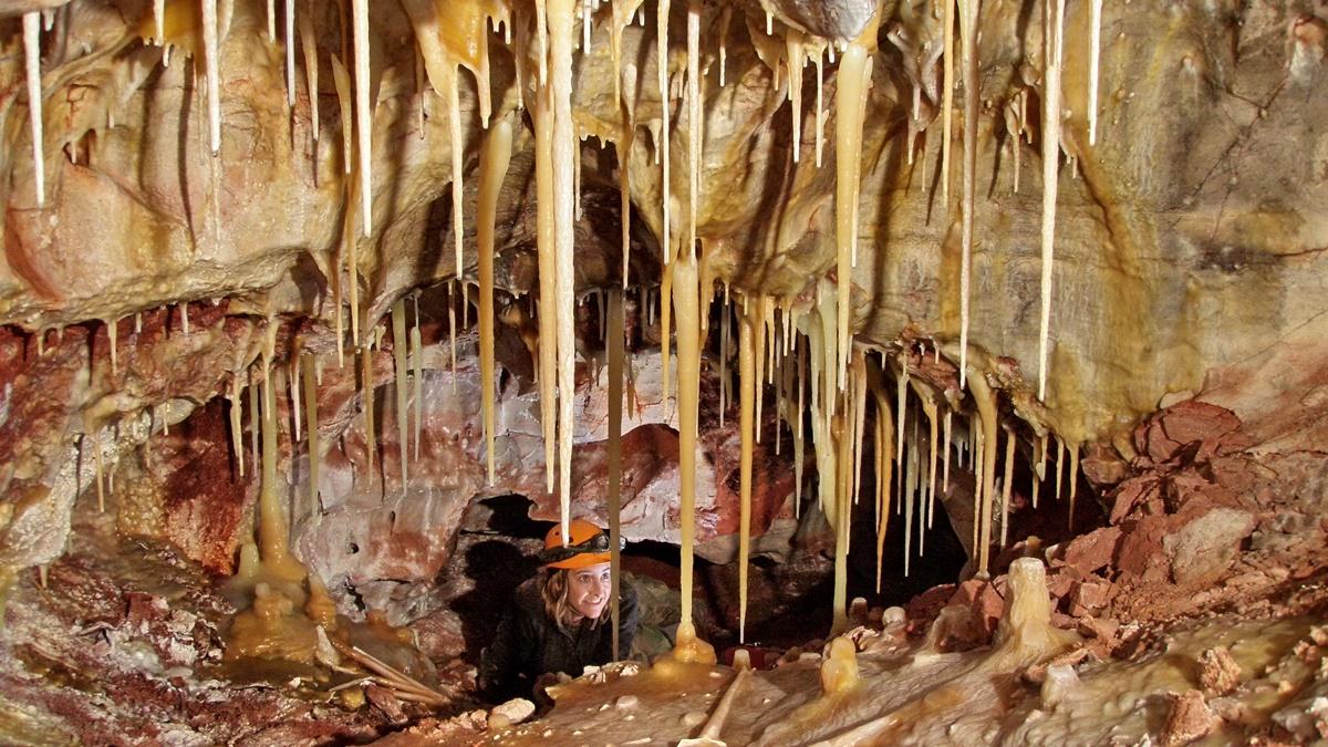 Národní park Wind Cave | © National Park Service