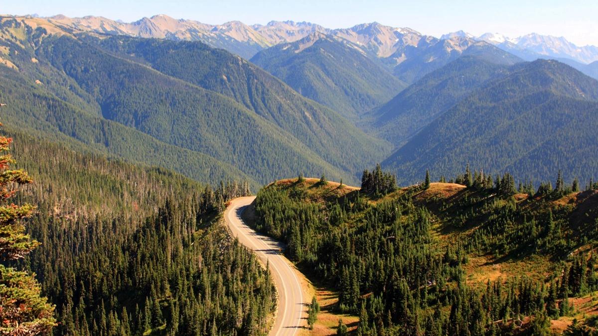 Silnice vedoucí k Hurricane Ridge | © Frank Kovalchek
