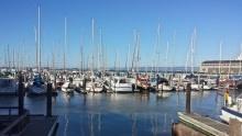 Pier 39 vSan Franciscu: Molo spulzující atmosférou astovkami lachtanů