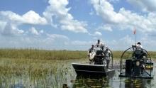 Toužíte podobrodružství? Projeďte se vHummerech ponárodním parku Everglades!