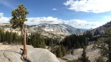 Yosemitský národní park: Království bouřících vodopádů ažulových skal